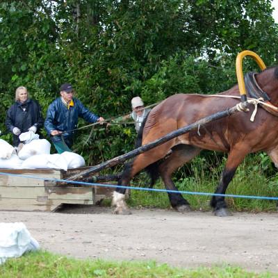 ER hobusega maksimaalvedu