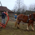 EHS eesti raskeveohobuse kasvatajate aastakoosolek_Vello Tamme hobutöömasinad3