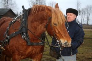 Eesti raskeveo hobune  Hämarik ja Vello Tamm
