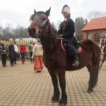 vene raskeveohobune