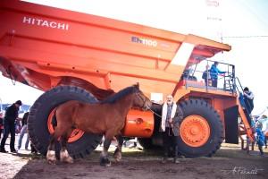 Nevrik 2207 ER hiiglasliku Hitachi veoki kõrval. Foto A. Pernits