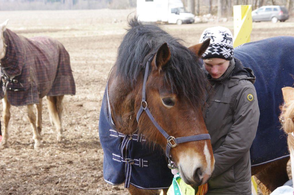 Uku Andreas ja tema hobune Ellävhõpõ peavad nõu peale oma esimest võistlust. Foto: Rein Raudsepp